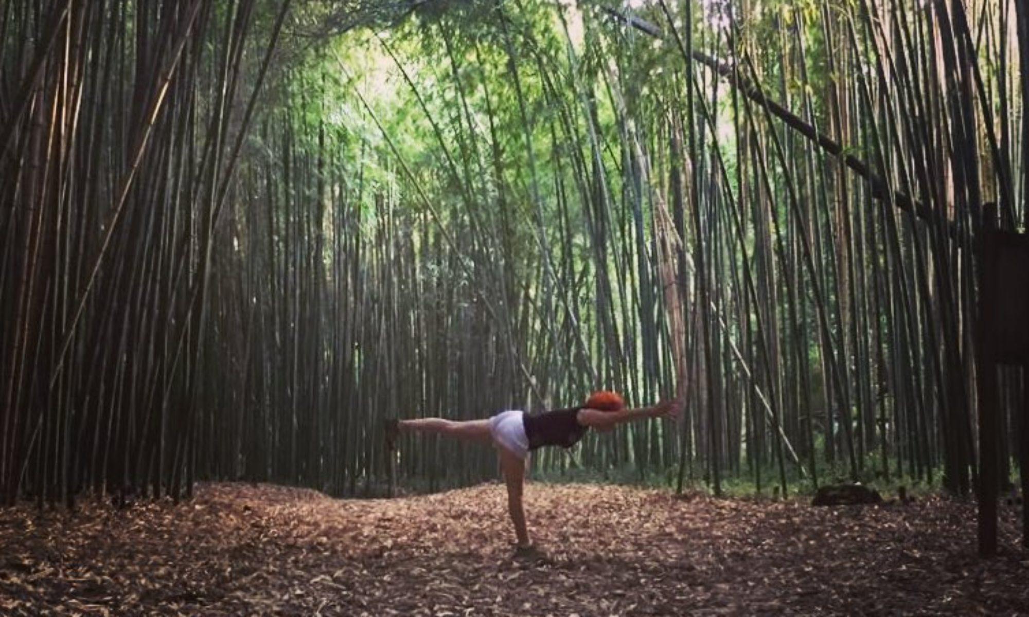 Chala Yoga & Ayurveda